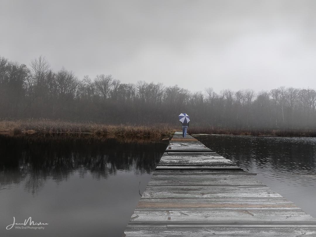 Photo Walking at the Watershed