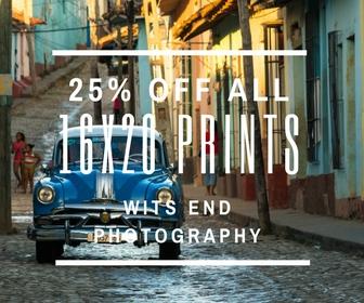 www.witsendphotography.com