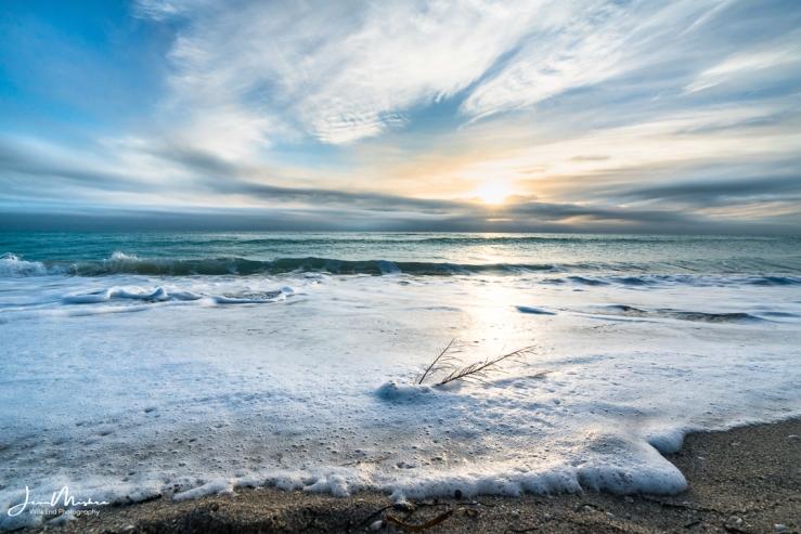 Photo Sea Foam