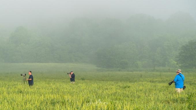 Photo Shooting Photographers