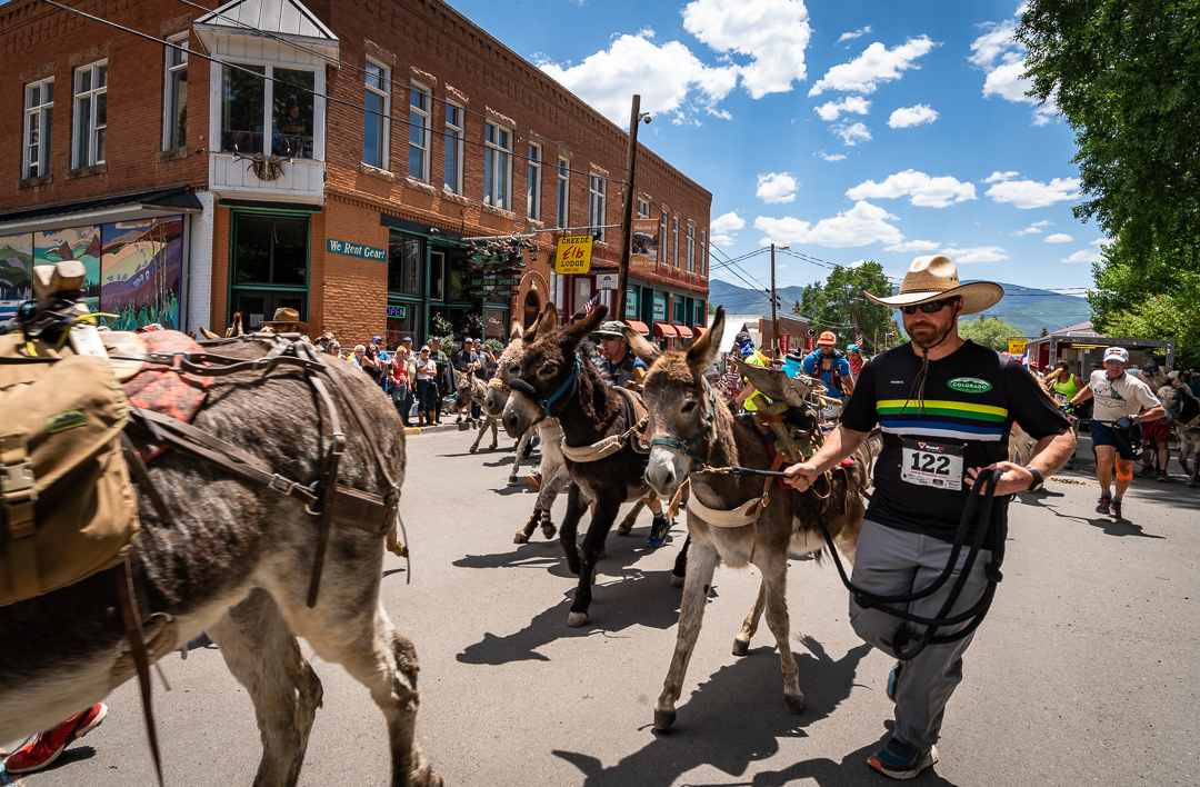 Photo Donkey Race