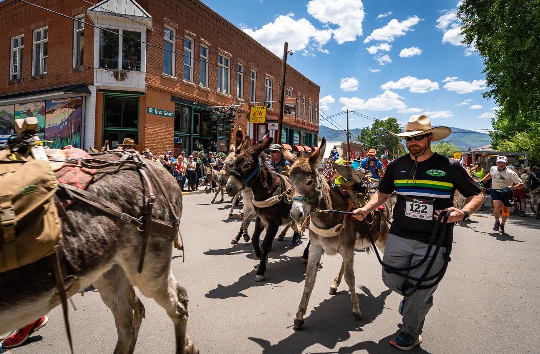 Photo Donkey Race