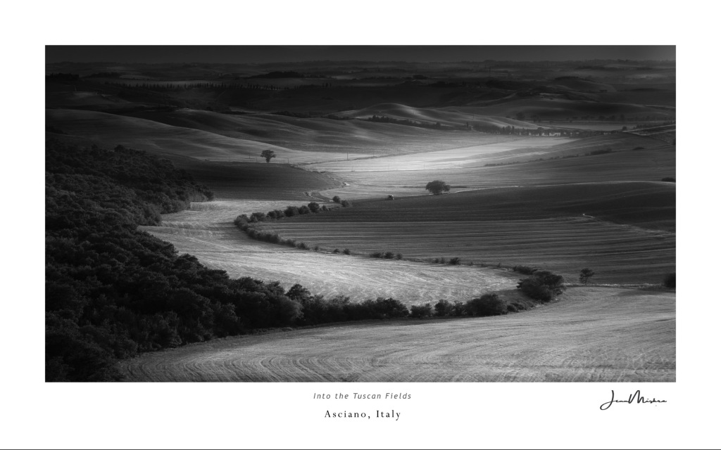 Tuscan field in black and white